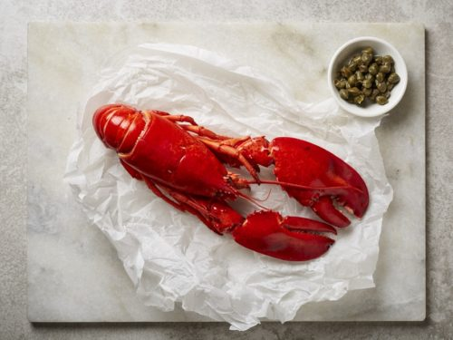 cooked whole Canadian lobster